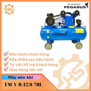 TM-V-0.12_8-70L