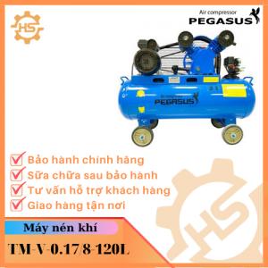 TM-V-0.17/8-120L