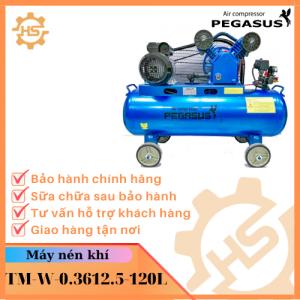 TM-W-0.36/12.5-120L(220V)