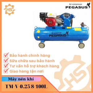 TM-V-0.25/8-100L