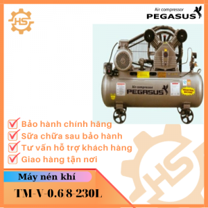 TM-V-0.6/8-230L