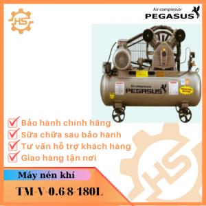 TM-V-0.6/8-180L