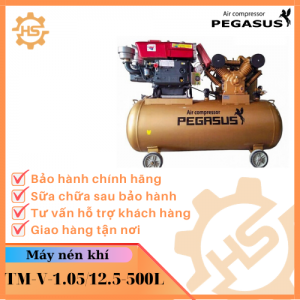 may-nen-khi-pegasus-TM-V-1.05/12.5-500L