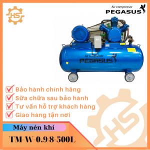 TM-W-0.9/8-500L